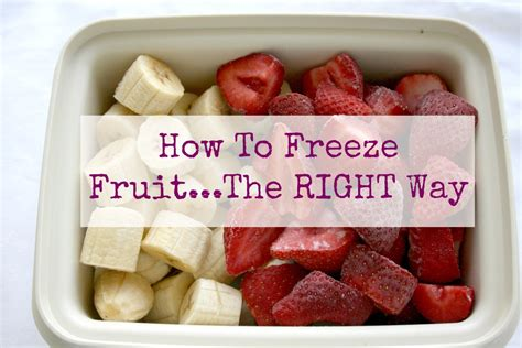 how to freeze with fruit fresh how to archives the klutzy cook