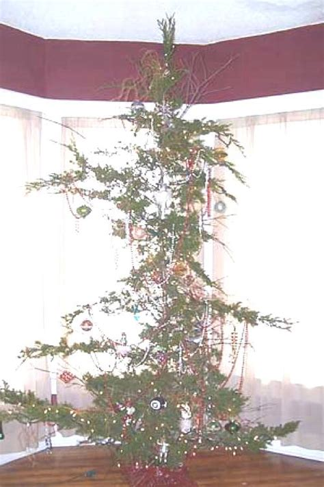 the fifteen ugliest christmas trees known to man