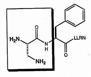 Patent WO1995001372A1 - Peptidase resistant thrombin ...