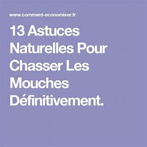 Comment Chasser Les Mouches : 13 astuces naturelles pour chasser les mouches ~ Melissatoandfro.com Idées de Décoration