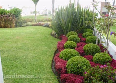 paisajismo otra visi 243 n a tu espacio jardineros mx