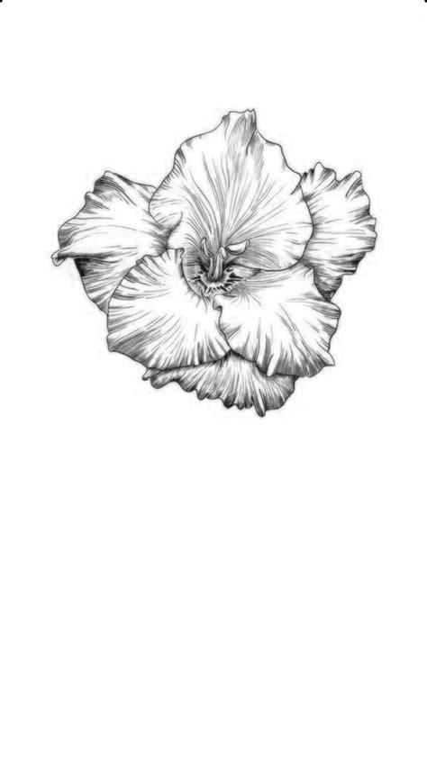 Gladiolus flower tattoos image by Keyara Baez on Tattos