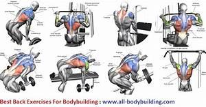 Best Back Exercises For Bodybuilding Bodybuilding Program