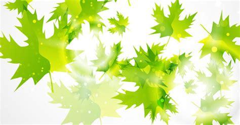 green leaf background   vector art
