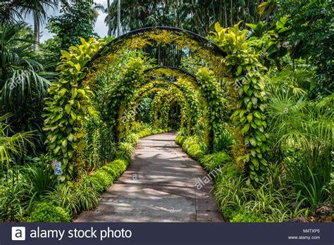 Botanischer Garten Singapur Unesco by Botanic Gardens Singapore Stockfotos Botanic Gardens