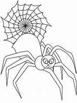 Insects Coloring Pages sketch template