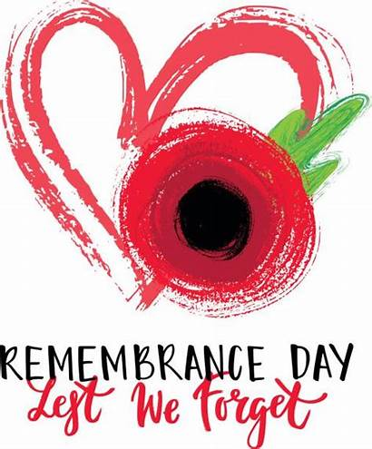 Remembrance Poppy Clip Vector Illustrations Card Graphics