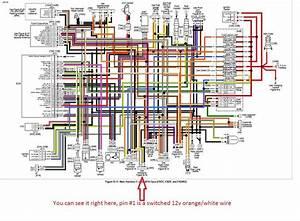 Load King Wiring Diagram