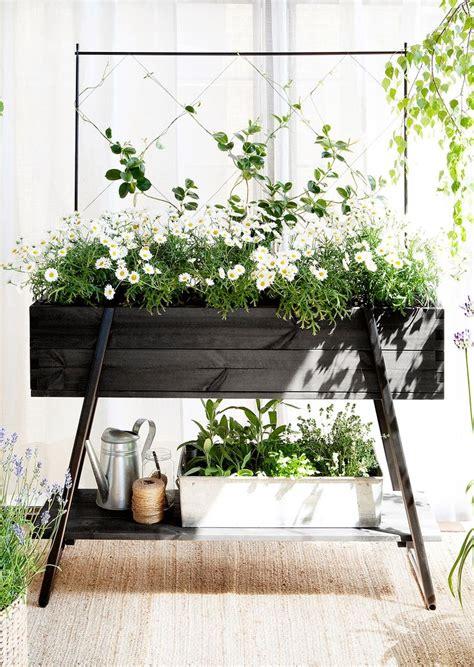 ideas  raised planter boxes  pinterest