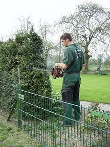 Bäume Beschneiden Jahreszeit : frank giesen garten und landschaftsbau ~ Yasmunasinghe.com Haus und Dekorationen