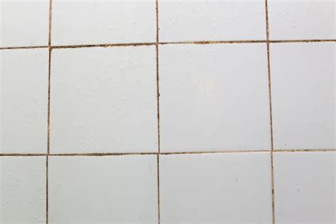 fugen schimmel entfernen schimmel in fugen im bad 187 entfernen vorbeugen