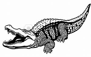 Crocodile Clipart Black And White | Wallpapers Gallery