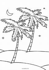 Coloring Tree Pages Palm Printable Cool2bkids Coconut Pretty Birijus sketch template