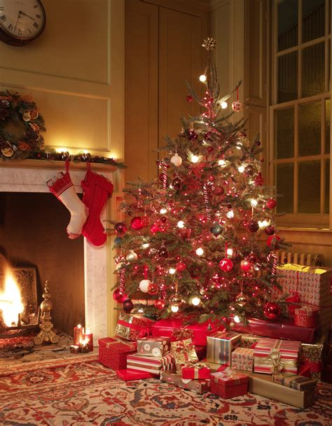 how to replace a fuse on christmas tree lights ehow