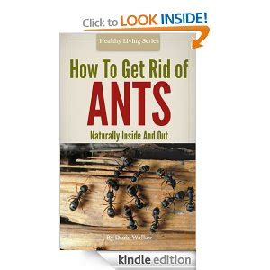 How To Get Rid Of Ants Inside The House by How To Get Rid Of Ants Organic And Green Housecleaning