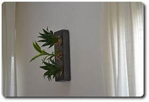 Pflanzen An Der Wand : echte pflanzen an der wand update der flowerboxen ~ Articles-book.com Haus und Dekorationen