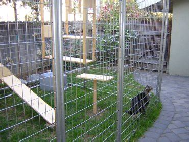 outdoor cat enclosures outside protected play and rest