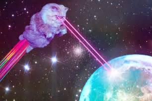 laser cat shrine of laser cats wonkeyweb