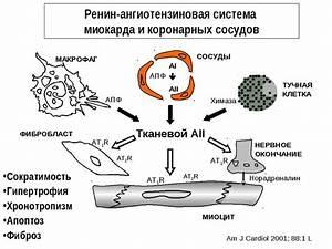 Отделение гипертонии