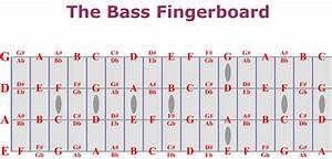 Bass Fretboard Chart