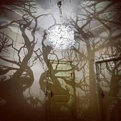 tree shadow chandelier design trees