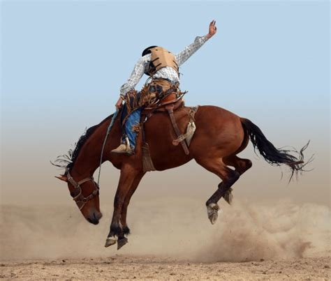 Rodeos in Arizona - Fill Your Plate Blog