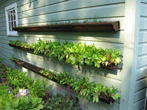 Gutter Vertical Garden by Gutter Planters Learning As I Go