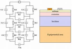 Biosensors | Special Issue : Novel Biosensing Platforms ...