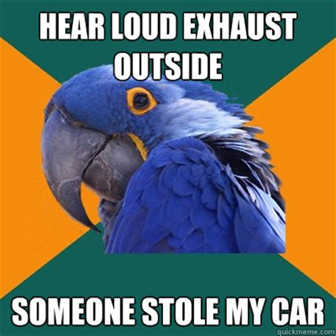 Memes Mufflers - hear loud exhaust outside someone stole my car paranoid parrot quickmeme