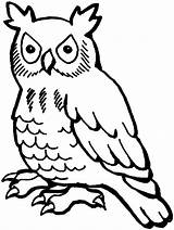 Owl Coloring Animals Printable Owls Line Drawing Sheets Owlish sketch template
