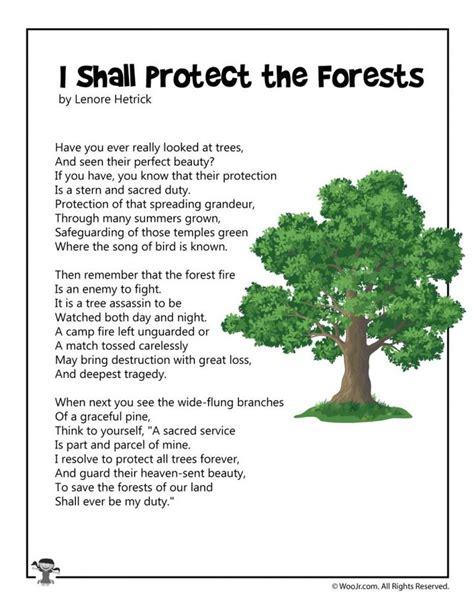 protect  forests conservation poem woo jr