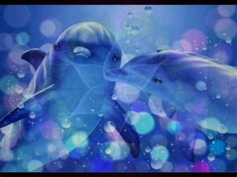 reiki sonidos del mar  delfines armonia  luz youtube
