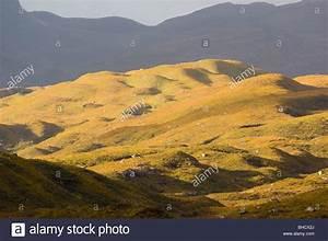 Drumlins, or glacial moraines, in Glen Torridon, Scottish ...