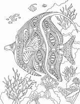 Coloring Pages Adults Printable Sea Adult Mandala Under Fish Zentangle Therapy Animal Print Mandalas Angelfish Pdf Malen Digital Ocean Animales sketch template