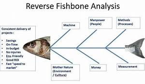 The Concept Of The Fishbone Diagram And The Reverse