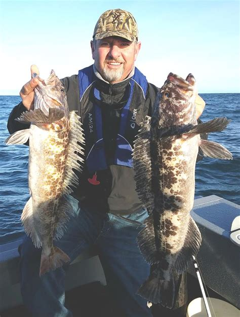 The Boat Fish And Chips Coos Bay by Fish Report Coos Bay Water Lingcod Crabbing