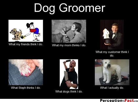 Dog Groomer Meme - dog grooming funny quotes quotesgram