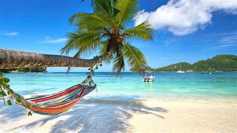 wallpaper turquoise beach palm  travel wallpaper