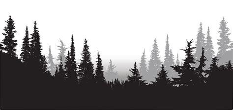 fir forest clipart clipground