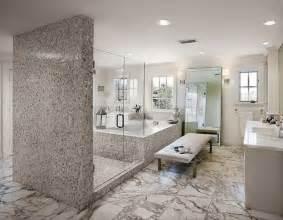 bathroom designs with walk in shower revêtement mural salle de bain moderne