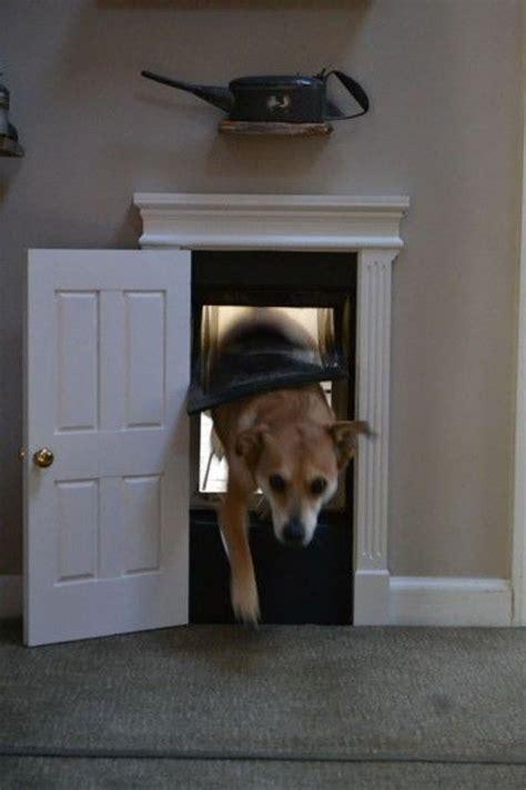 cute indoor dog house door