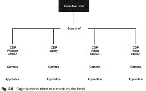 Organizational Structure Of The Kitchen