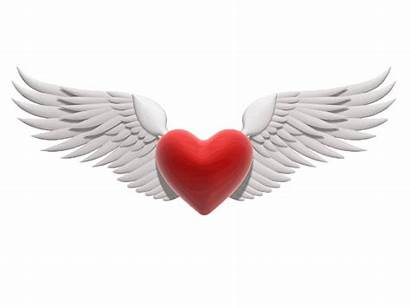 Yes Heart Flying Hey Reflection Beloved Hearts