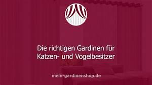 Kräuselband Vorhang Wie Aufhängen : gardinen die richtige kombination f r katzen vogelbesitzer ~ Markanthonyermac.com Haus und Dekorationen