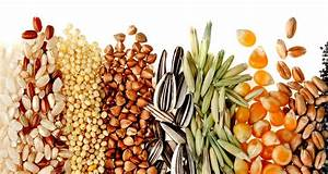 Complex Carbs vs. Simple Carbs - Naked Food Magazine