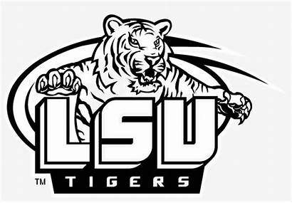 Lsu Tigers Tiger Drawing Transparent Drawings Paintingvalley