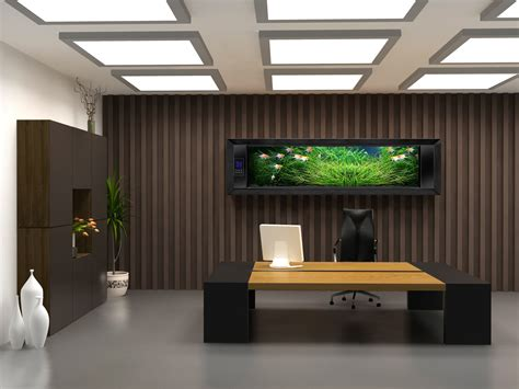 decoration bureau ceo office design bellisima