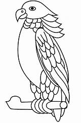 Parrot Coloring Sisserou Printable Pages A4 sketch template