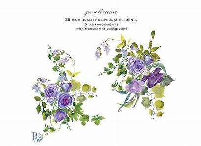 Purple Watercolor Clip Flowers Roses Painted Wine