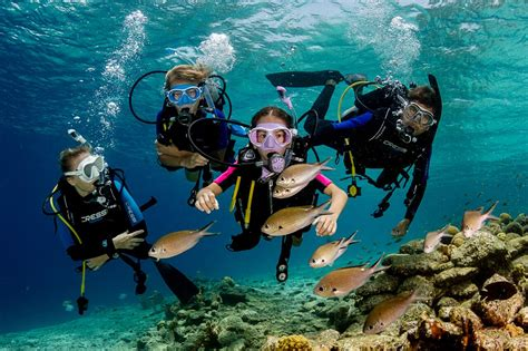 the planet s best places to learn to dive dive reviews reports